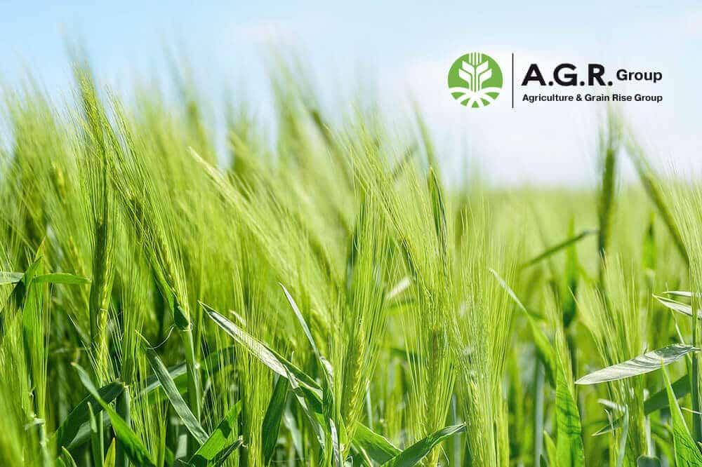 AGR GROUP joins APS tender platform 1