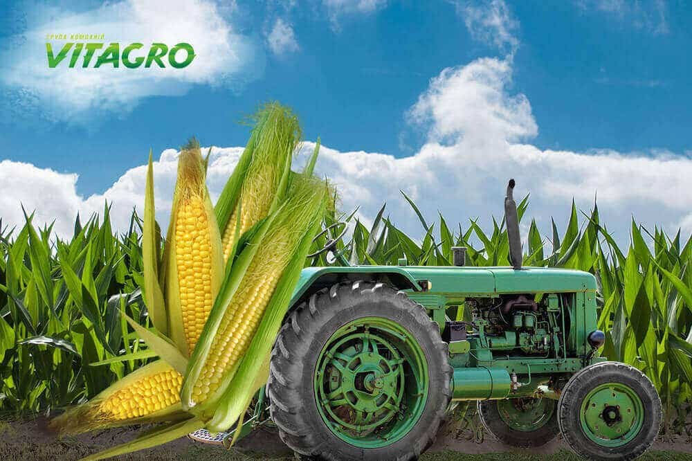 Purchases of agro-industrial enterprises and holdings: our client VITAGRO 2